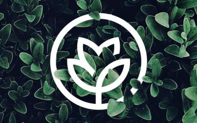 """Über uns: Wer wir sind & wieso dieser Blog """"Management Garden"""" heißt"""